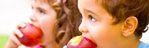 Técnico Profesional en Nutrición Infantil (Doble Titulación Universitaria con 4 Créditos ECTS)- RedEduca