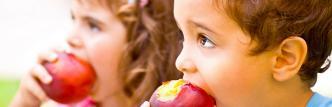 Técnico Profesional en Nutrición Infantil  (Titulación Profesional DIETAS INFANTILES Acreditada) (Doble Titulación Universitaria con 4 Créditos ECTS + Licencia Oficial Software de Elaboración de Dietas)- RedEduca