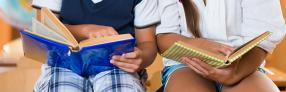 Titulación Universitaria en Animación a la Lectura + Aplicación de las Bibliotecas Escolares y Web 2.0 (Curso Homologado y Baremable en Oposiciones de la Administración Pública + 8 Créditos ECTS)- RedEduca